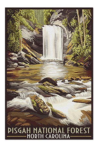 Pisgah National Forest, North Carolina (20x30 Premium 1000 Piece Jigsaw Puzzle, Made in USA!)