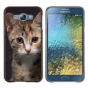 TECHCASE---Cubierta de la caja de protección para la piel dura ** Samsung Galaxy E7 E700 ** --Manx American Shorthair Gato rosado de la nariz