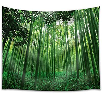 That You Will Love, Charming Piece of Art, Leaves Framing a Bamboo Forest