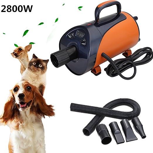 Iglobalbuy 2800W PET secador de pelo, de bajo ruido aseo Blaster secador para perro de gato: Amazon.es: Hogar