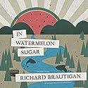 In Watermelon Sugar Audiobook by Richard Brautigan Narrated by Bronson Pinchot