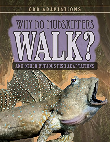 Fish Mudskipper (Why Do Mudskippers Walk?: And Other Curious Fish Adaptations (Odd Adaptations))
