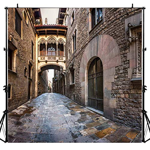 Spain Gothic Quarter Barcelona Old City Lane Photography Backdrop for Party, 6x6FT, Brick Wall Portraits Background, Photo Booth Studio Props -