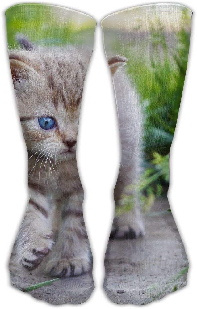 Calcetines clásicos unisex Fondos de pantalla de gatos y gatitos ...