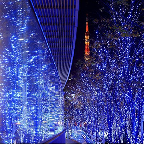 100 Blue Led Christmas Lights - 4