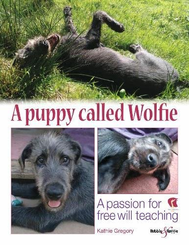 A Puppy Called Wolfie: A passion for free-will teaching