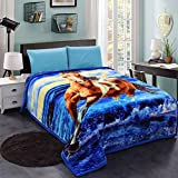 Heavy Blanket for Winter, JML Plush Korean Style Mink Blankets – Queen Size, Silky Soft, Anti-Static, 2 Ply Thick, Hypoallergenic Printed Fleece Blanket, Horse