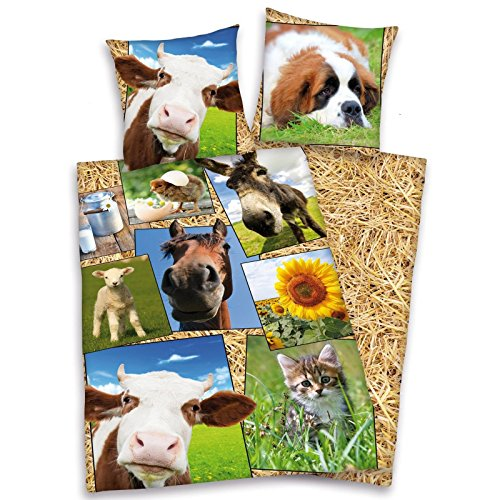 Farmyard Animals - 1