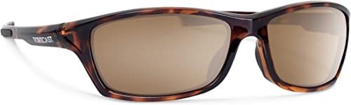 Forecast Optics Chet Sunglass