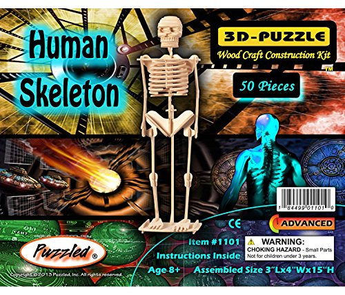 Puzzled Human Skeleton 3D Jigsaw Puzzle (50-Piece), 3 x 4 x 15
