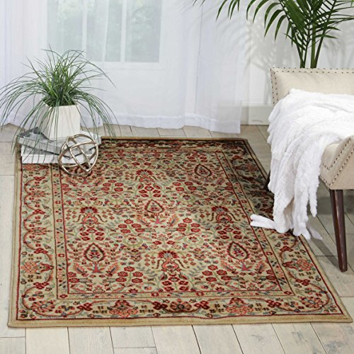 - Nourison Persian Arts (BD08) Ivory Rectangle Area Rug, 2-Feet by 3-Feet 6-Inches (2' x 3'6