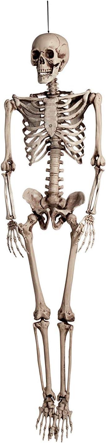 BOLAND BV Esqueleto de Halloween 160 cm, Muy Real