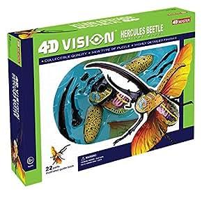 4D Vision Hercules Beetle Anatomy Model