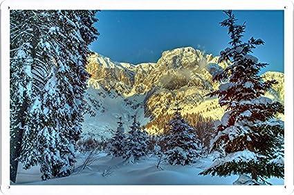 Amazon Com Planet Scene Poster Winter Mountains Austria Snow