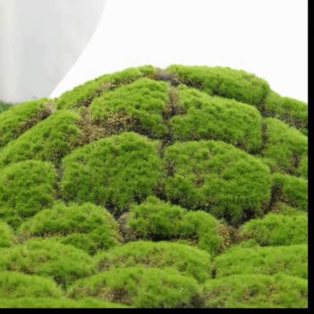 XHSP Artificial Grass Rug Fake Moss Grass Turf DIY Synthetic Turf Landscape Artificial Grass Mats Lawn Carpet for Wedding Home Backyard Patio Balcony Indoor Outdoor Decor,3.28x3.28 ft