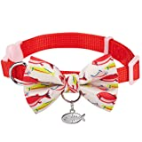 Blueberry Pet 18 Designs Timeless Scarlet Red