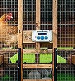 ChickenGuard Extreme Automatic Chicken Coop Door