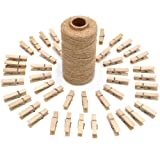 jijAcraft 100 Pcs Mini Natural Wooden Clothespins