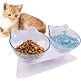 Double Cat Bowl with Raised Stand,15°Tilted Platform Cat Feeders Food and Water Bowls,Reduce Neck Pain for Cats and…