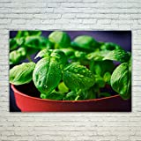 Westlake Art Leaf Basil - 12x18 Poster Print Wall Art - Modern Picture Photography Home Decor Office Birthday Gift - Unframed 12x18 Inch (23C1-C93D5)