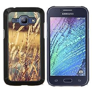 """Be-Star Único Patrón Plástico Duro Fundas Cover Cubre Hard Case Cover Para Samsung Galaxy J1 / J100 ( Cultivos en The Sun"""" )"""