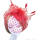 NUOLUX Retro Style Bird Cage Mesh Bridal Face Veil Feather Fascinator Hair Clip (Red)