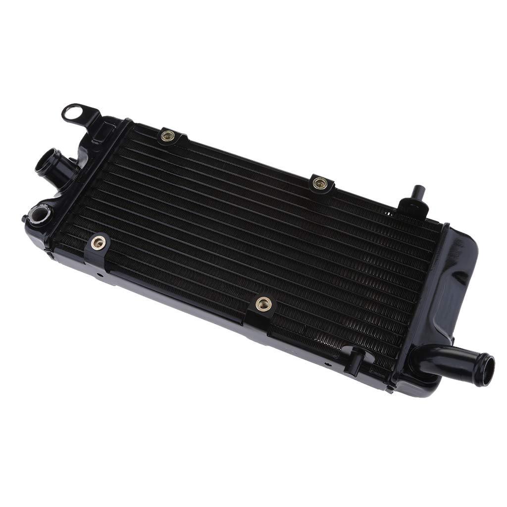 D DOLITY Radiatore Per Honda Shadow VT600 VLX600 90-96