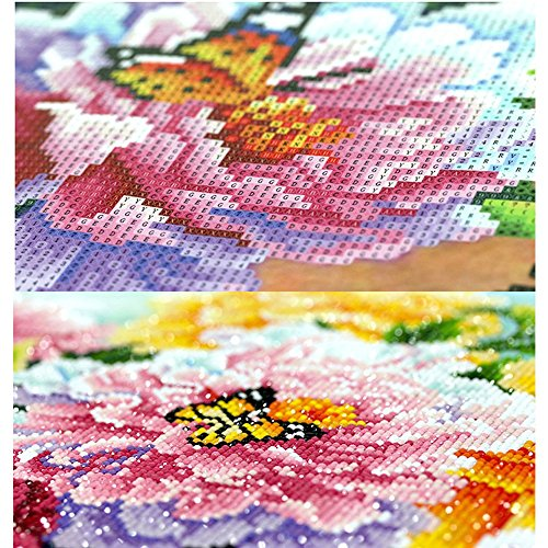 MXJSUA 5D DIY Diamond Painting Kit by Number Full Drill Round Beads Crystal Rhinestone Picture Supplies Arts Craft Wall Sticker Decor-Coco Seagull Beach 12x16in