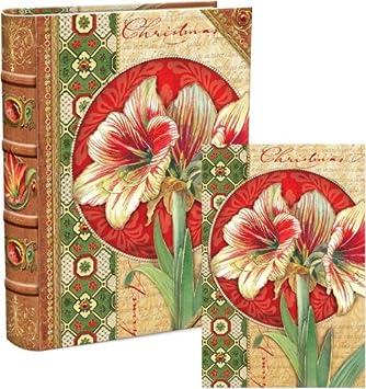 amazon com punch studio amaryllis book box christmas holiday cards