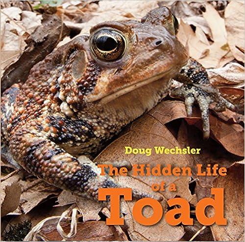 Libros Gratis Para Descargar The Hidden Life Of A Toad Kindle Puede Leer PDF