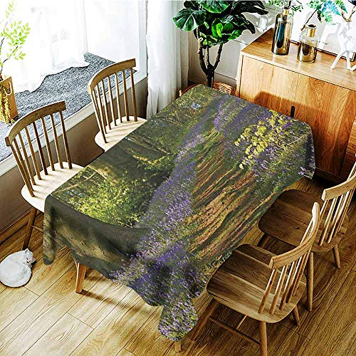 XXANS Small Rectangular Tablecloth,Woodland,A Carpet of Bluebells Spreads Through Woodland in Staffordshire England,Table Cover for Dining,W54x90L Green Purple Brown