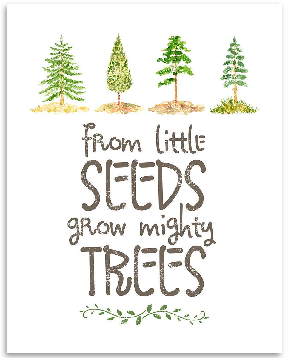 From Little Seeds Grow Mighty Trees - 11x14 Unframed Art Print - Great Gift and Decor for Nursery and Children's Room Under $15