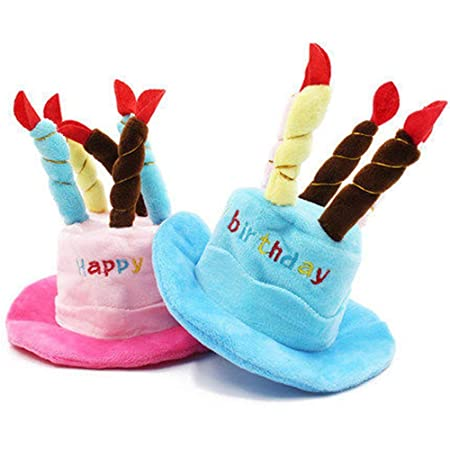 DGdolph Gorras para Mascotas Sombrero de Feliz cumpleaños ...