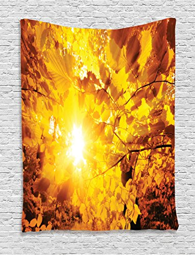 Ambesonne Farm House Decor Collection, The Bright Sun Shining Through the Gold Leaves of Beech Trees in A Forest View, Bedroom Living Room Dorm Wall Hanging Tapestry, (Beech Tree Leaves)