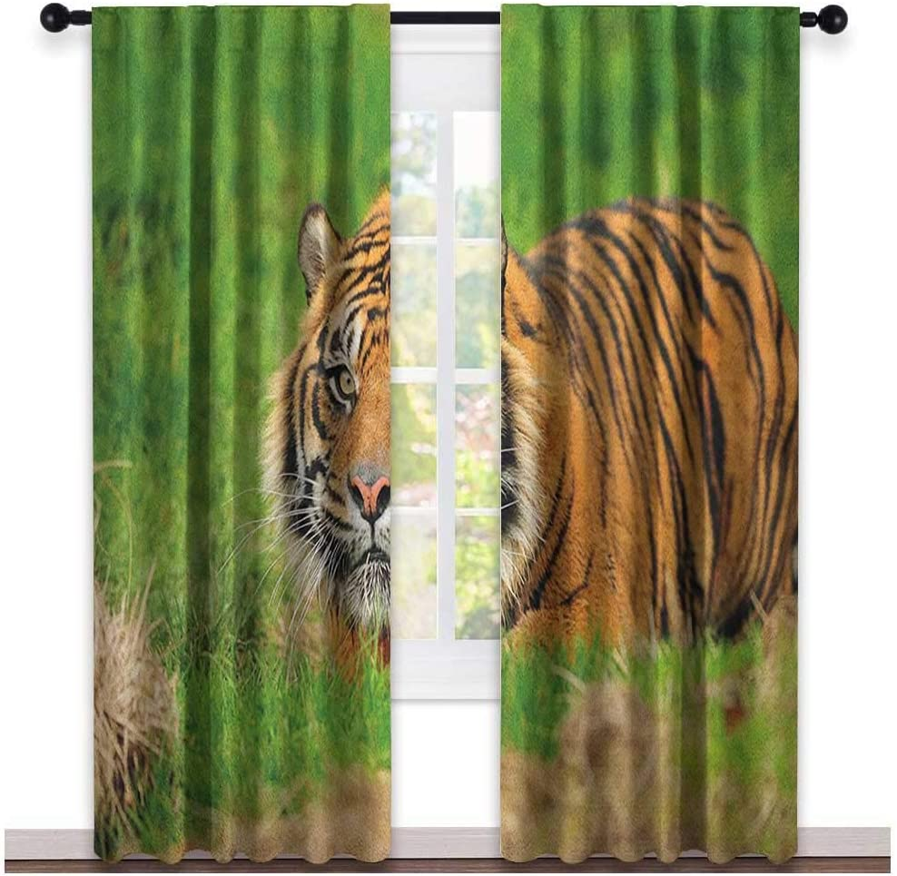 leinuoyi Tiger Outdoor Curtain for Patio Waterproof W72 x L96 Inch Green Orange Sumatran Feline Hiding in Ambush While Stalking Its Prey Moments Before Attack Outdoor Curtain Kit