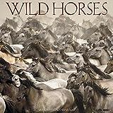 Wild Horses 2018 Calendar