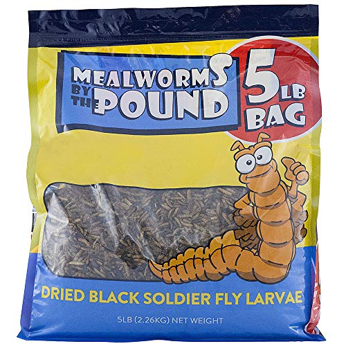 (Mealworms by the Pound Bulk Dried Black Soldier Fly Larva - Treats for Chickens & Wild Birds (5 Lbs))