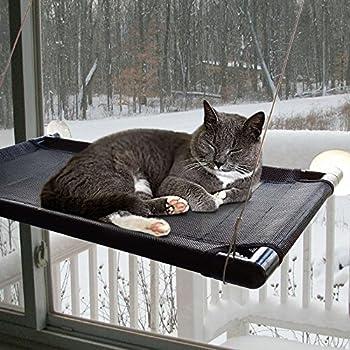 Amazon.com : Originalidad Strong Suction Cup Cat Window