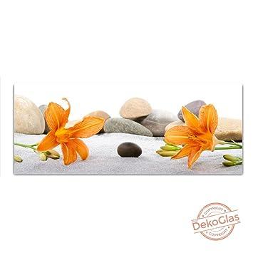 Imágenes de vidrio flores de cristal reales piedras mural 125x50cm Flotador: Amazon.es: Hogar