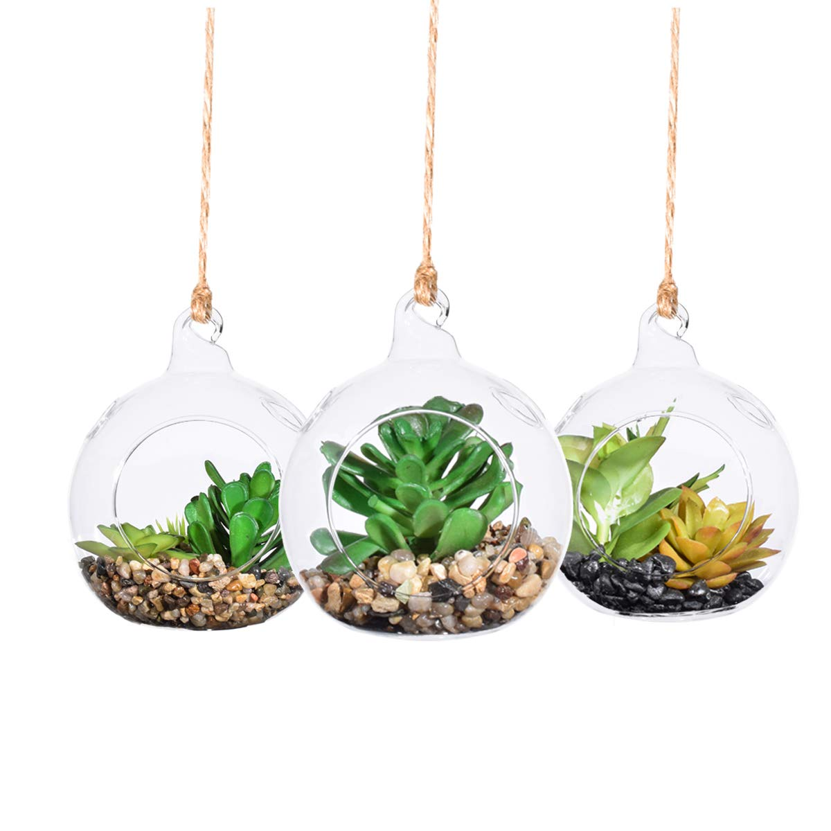 3 Pack Hanging Glass Planter Round Air Plant Glass Holders Hanging Air Plants Glass Terrarium Planter - Refresh Your Air