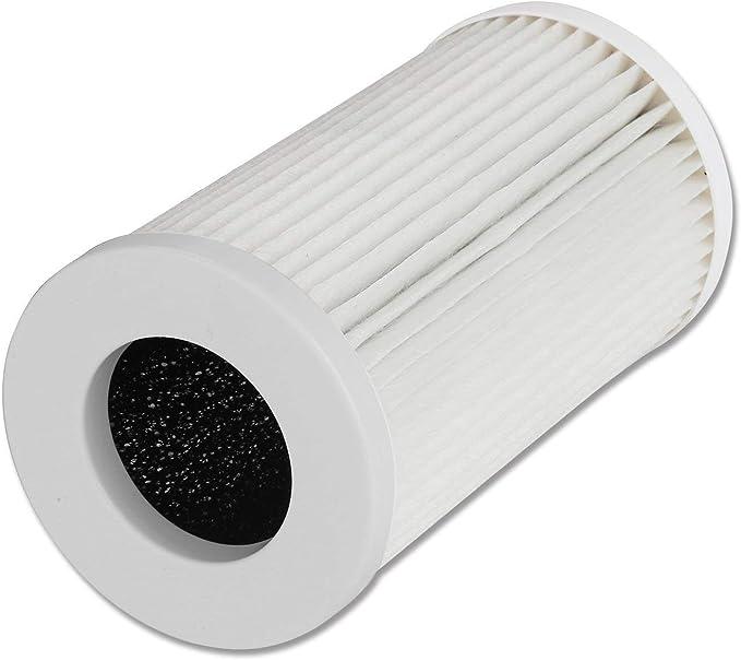 QUEENTY Filtro de Reemplazo de Purificador de Aire con Filtro HEPA Auténtico y Carbono Activo, 3 Etapas de Filtración, para Alérgenos, Humo, Polen, Olor, Caspas de Mascota: Amazon.es: Hogar