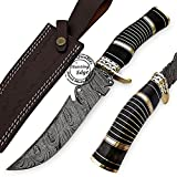 Beautiful Buffalo Horn Handmade Damascus Steel Hunting Skinner Knife Prime Quality, Promotional Price