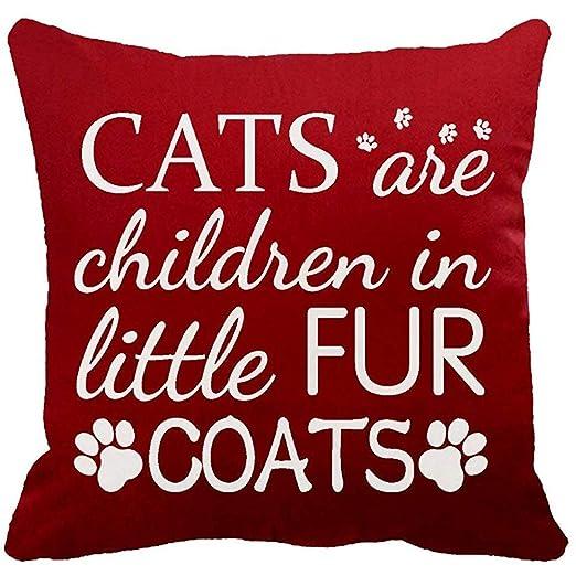 Suo Long Los Mejores Regalos para los Amantes de los Gatos ...
