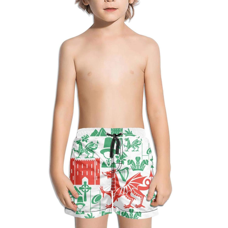 St.Davids Day Holiday Element Kids Side Split Fully Lined Absorbent Swim Shorts
