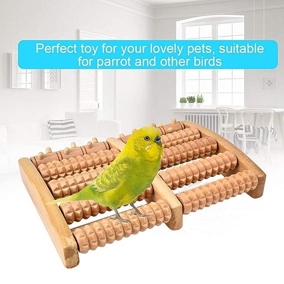 Ichiias Parrots Toy Bird Cockatiel Running Toy Jaula para Mascotas ...