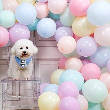 Amazon.com: PartyWoo - Globos de látex pastel, 100 unidades ...