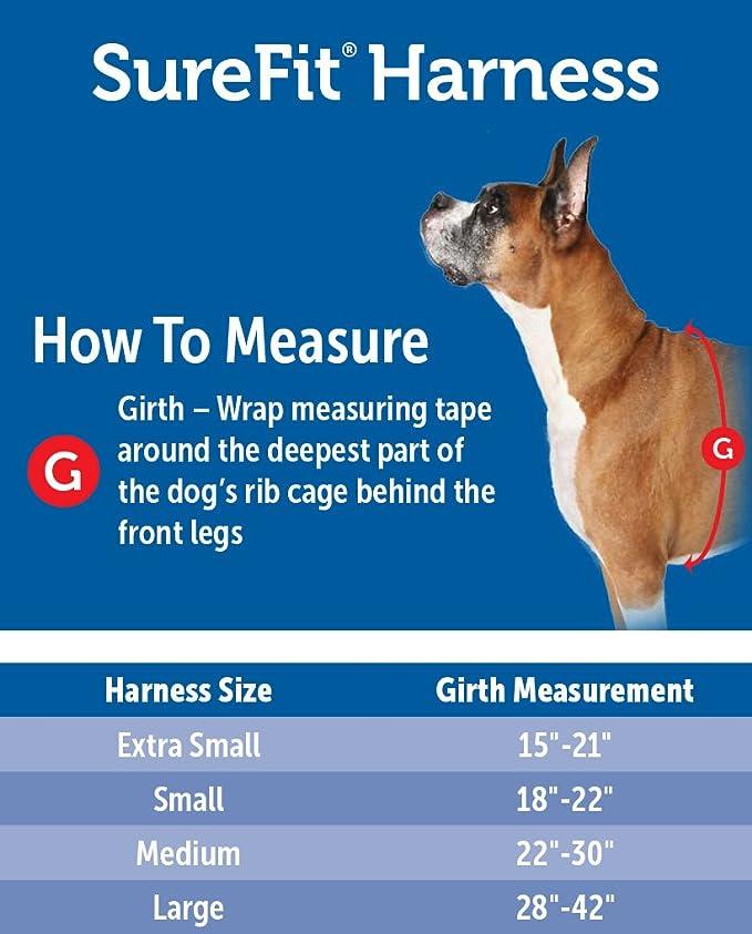 PetSafe Grande Sure Fit arnés: Amazon.es: Productos para mascotas