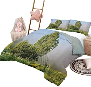 HouseLook Bedspread Quilt Set Nature Decor Modern Pattern Bedding Set Beautiful Serenity Trees Track Path Garden Leaves and Grass Sunny Skies Photography Twin Size Green