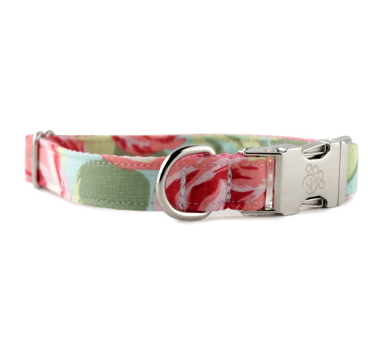 Amazon Rose Dog Collar Rose Garden Dog Collar Floral Dog