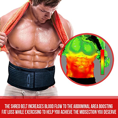 Lose belly fat while building muscle